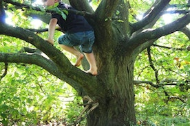 What Your Kids Teach You About Joy (If You're Willing to Hear It)