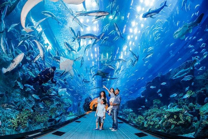 15 Fun Things to do in Dubai