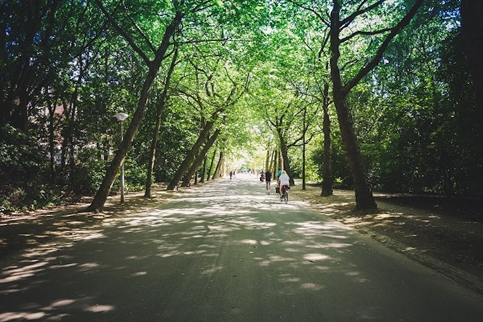 Greenery Amongst the Grey: The 5 Most Beautiful Metropolitan Parks