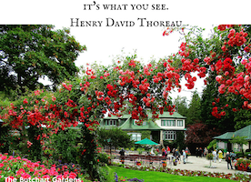 Victoria, BC: The Butchart Gardens #Travel