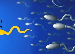 The History of Fertility Doctor | Medical | Verway Athens