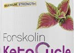 http://www.beautyandsupplement.com/forskolin-keto-cycle/