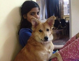 This Woman Refused To Marry A Guy Because He Didn't Want To Keep Her Dog