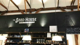 The Seed House: Being in the Business of Holistic Transformation