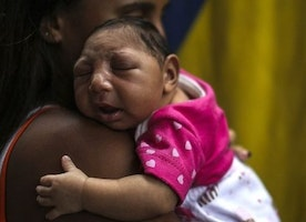 Zika Virus Proves That Global Warming is a Women's Issue