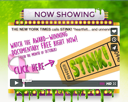 How Many Cancer Causing Chemicals Are in Your Home? #BreastCancerAwareness #StinkMovie