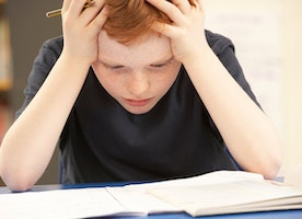 Do You Have a Struggling Student at Home?