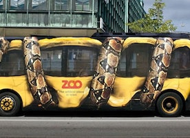 21 AMAZING STREET MARKETING CAMPAIGNS
