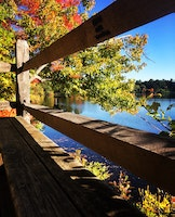 Family, Friends, and Fall Foliage