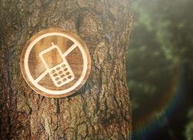 Digital Detox for Healthy Psyche