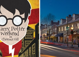 9 Reasons Why The Harry Potter Festival is the Only Fall Festival You Need to Do Next Year