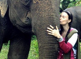 My friend and Actress Jon Mack and I are working on a campaign to end poaching. Please look at her new music video.