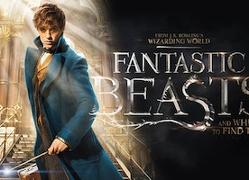Fantastic Beasts and Where to Find Them MFA Event