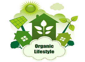 How to Live an Organic Lifestyle