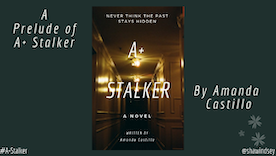 A+ Stalker: A Prelude