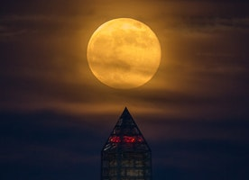 Don't Miss the Super Moon on Monday!