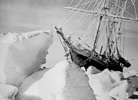Scott and Shackleton logbooks prove Antarctic sea ice is not shrinking 100 years after expeditions
