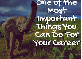 One of the Most Important Things You Can Do For Your Career