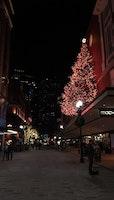 Christmas Lightings!