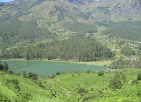 Top tourist places in Munnar