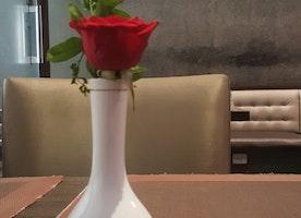 Dining Alone…
