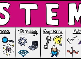 Minorities in the STEM Workforce