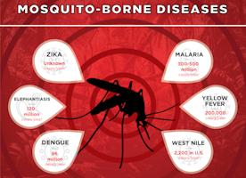 Types Of Mosquito Borne Diseases