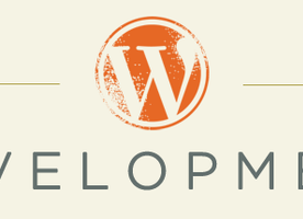 Tips and Tricks for WordPress Development | Blog | Colorlabs & Company