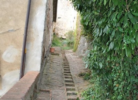 Walking path in Montefollonico