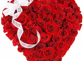 Send Valentine Flowers to Jaipur