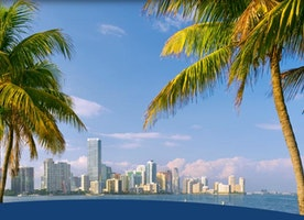 Great Travel Destinations in Tampa