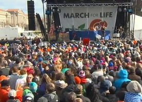 Watch Live: The Vice President Will Address The March For Life