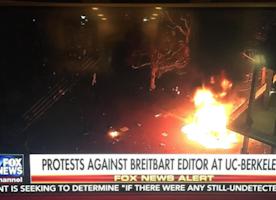 Protest Turns Violent: Free Speech