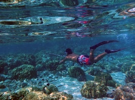 Your Ultimate Guide to Scuba Diving in Hawaii
