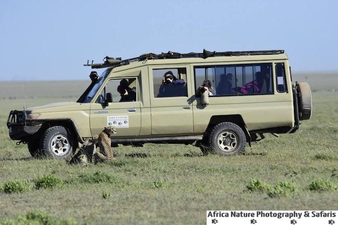 The Best Of Tanzania Adventures.