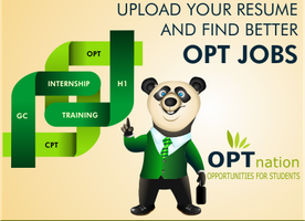 How OPT Nation Helps in Searching Jobs for International Students
