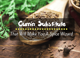 13 Cumin Substitute Ideas: That Will Make You A Spice Wizard! - Just Another Food Blog - GoodFoodFun.com