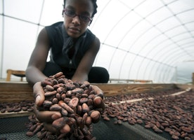 How engineering and chocolate are building a stronger Haiti, Part 1: Meet Corinne