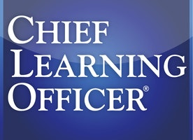 Insights into the roles and responsibilities of a chief learning officer