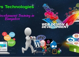Complete Info About Web Development