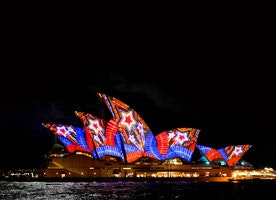 Vivid Lights Festival: A Volunteer's Perspective