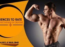 Creatine- Key to Muscle Building
