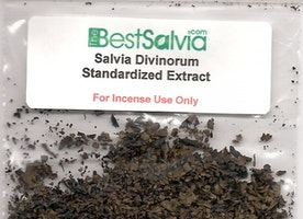 Why Using Salvia With A Vaporizer Is A Great Decision