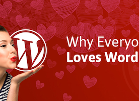 Reasons Why Everyone Loves WordPress