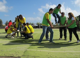 How to Plan a Team Building Event for Better Cooperation of the Employees?