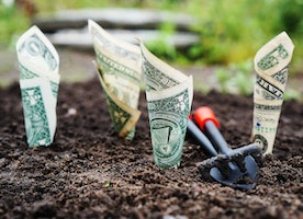 How To Save Money On  Your Garden: 5 Effective Recycling Ideas