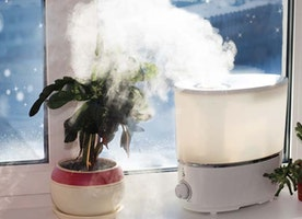 Ultimate Benefits of Using a Humidifier