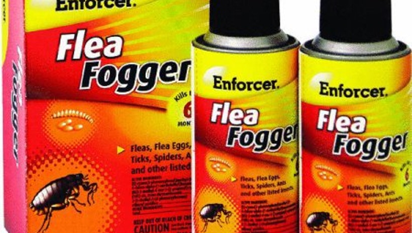 Some safety precaution for Flea Fogging
