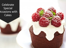 Celebrate Special Occasions with Cake