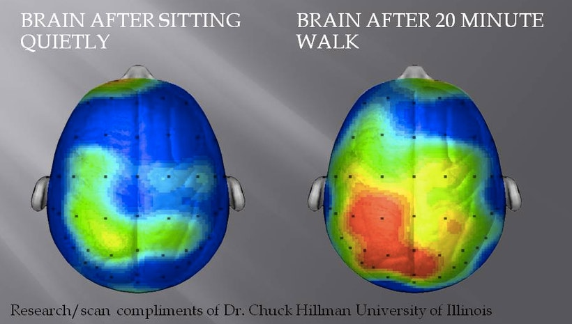 Walking is Daily Brain Medicine